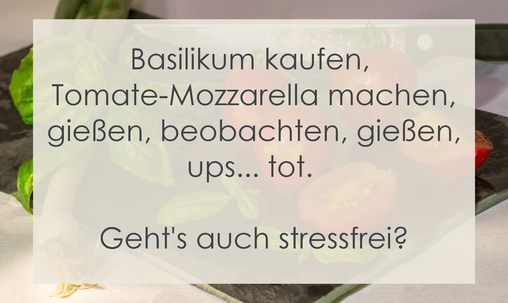 Basilikum kaufen, Tomate-Mozzarella machen, gießen, beobachten, gießen, ups... tot. Geht das auch stressfrei?