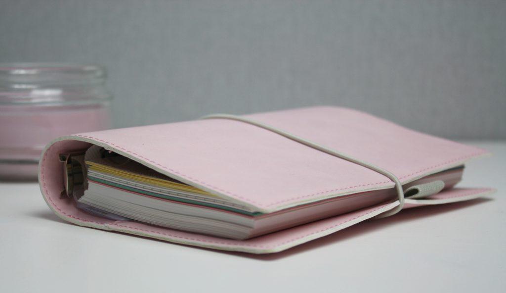 Terminplaner Personal Domino Soft Pale rosa
